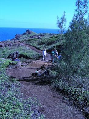 Volunteers hiking up dirt path.