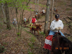 Equestrian riders riding along dirt path.