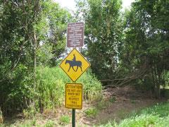 Trail signage along path.