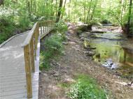 Wooden boardwalk along creek.